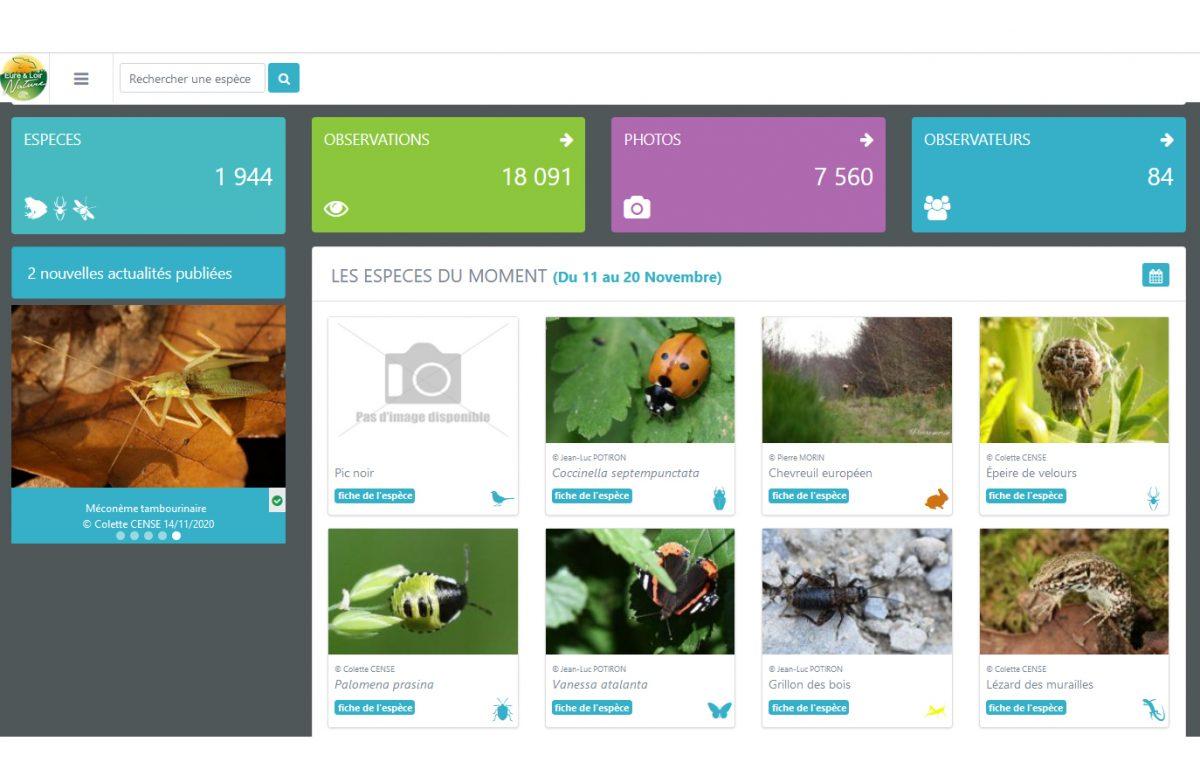 Obs'28 pour recueillir les données naturalistes d'Eure-et-Loir