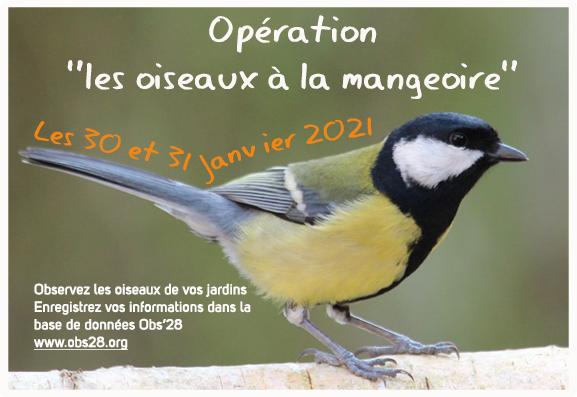 Les 30 et 31 Janvier, WE d'observation et de comptage des oiseaux à la mangeoire