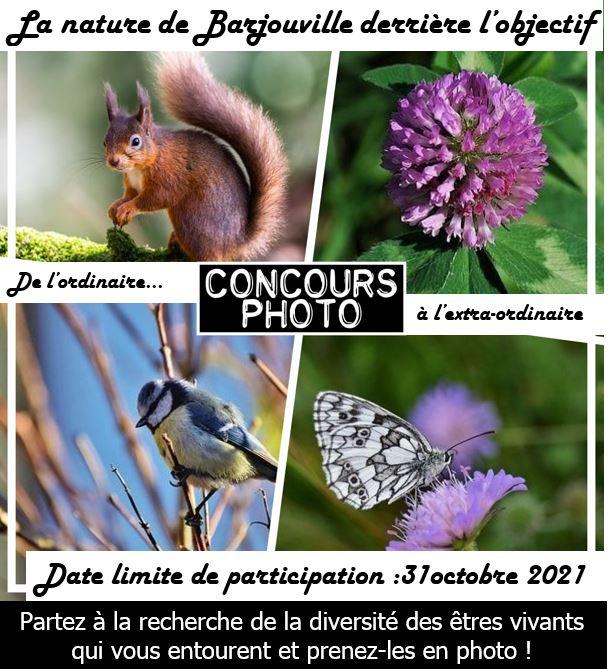 Concours photo: la nature de Barjouville derrière l'objectif